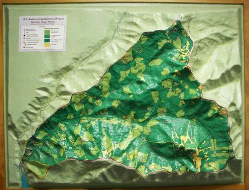 H. J. Andrews terrain