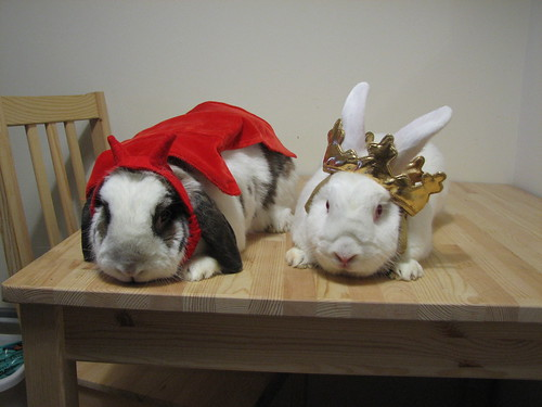 buns in costumes - betsy devil and gus king