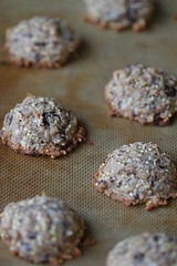 Cinnamon-Coconut Chocolate Chunk Cookie 6