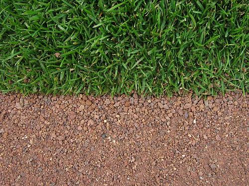 Grass & Dirt