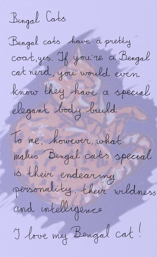 I Love My Bengal Cat