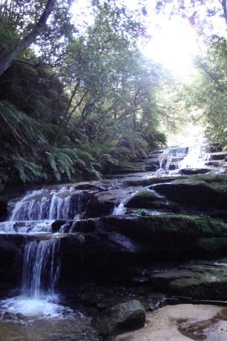 TRAVEL - Leura Cascades1