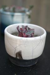 ceramics-139