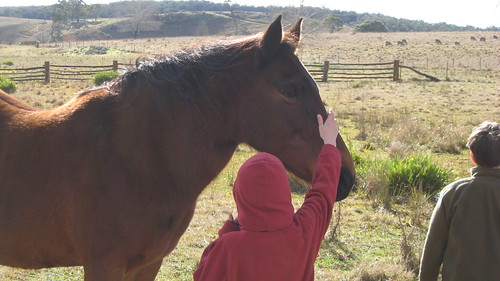 Caitlin and horse