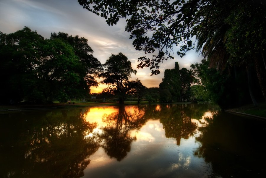 The Park in Buenos Aires