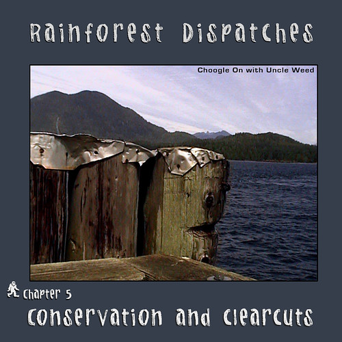 Conservation and Clearcuts