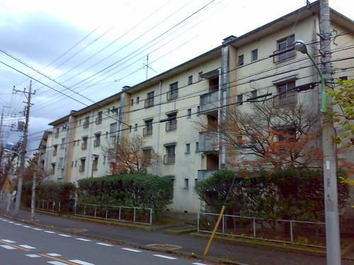 20101215598