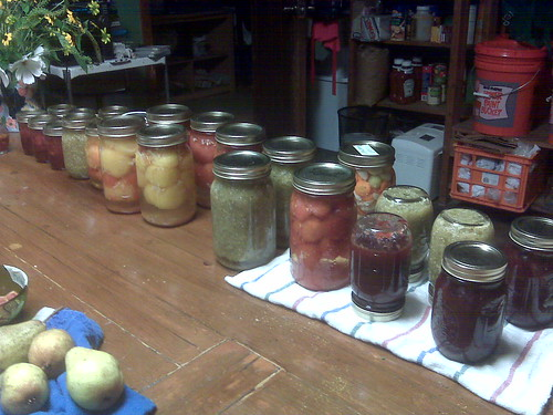 Canned goods: salsa verde, peach raspberry jam, spiced plum jam, pasta sauce, pickled what-not, whole tomatoes with basil and garlic