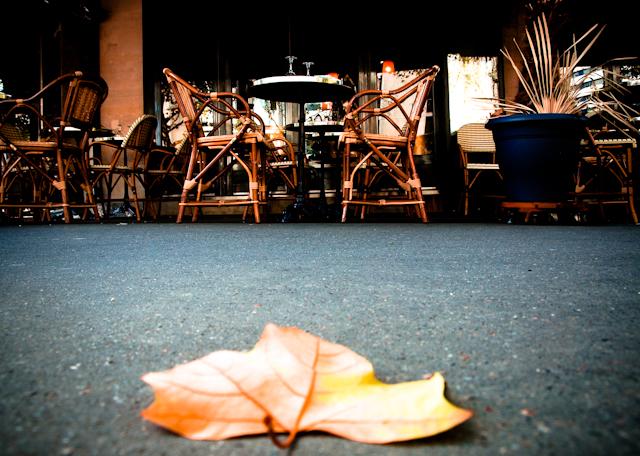 Cafe L'automne