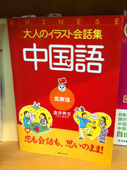 """""""adult"""" chinese language for japanese"""