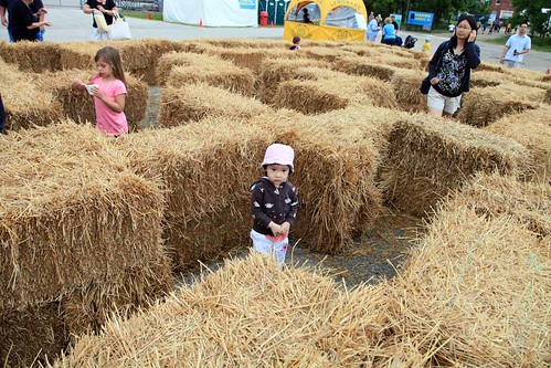 Outside, there was some bubble fun, picturing with Sir Topham Hatt (but need to pay $18 for one picture! NO WAY!) and this picture shows Erika in the Hay Maze, she loves it !