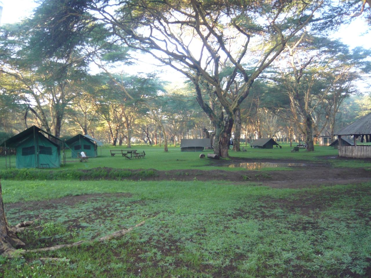 Lake Naivasha Camping
