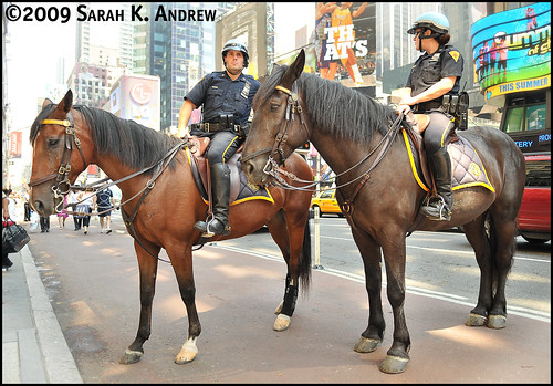 New York City Mounted Police