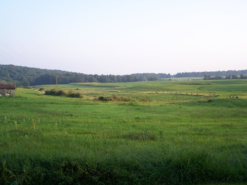 100_2006