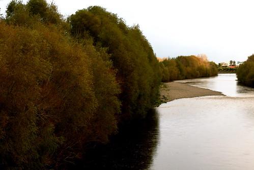 Saturday: The Hutt River in Autumn