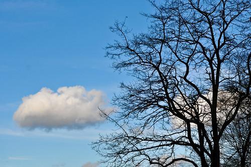 Sky in the Spring