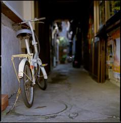 江ノ島_0025.jpg