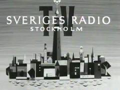 Sveriges Radio TV