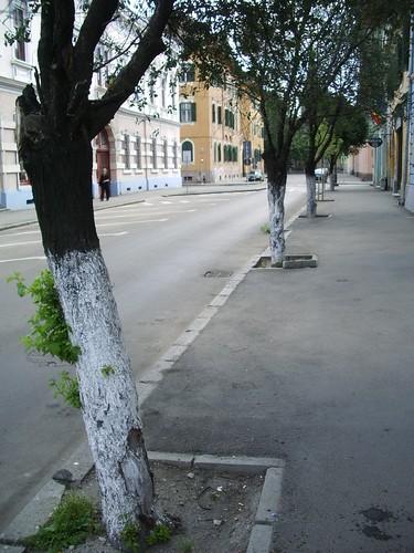 Romania 2007 (10) 055