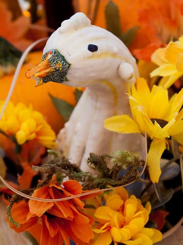 Duck Gourd