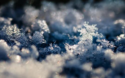 Snow Crystal Landscape