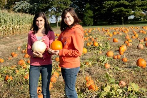 pumpkinpatch (1 of 1)-9