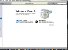 iTunes DJ Settings