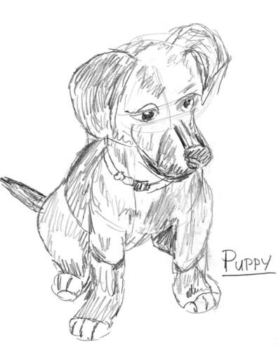 Scruffy dog, part 3