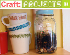 CRAFT Project - Mason Jar Terrarium