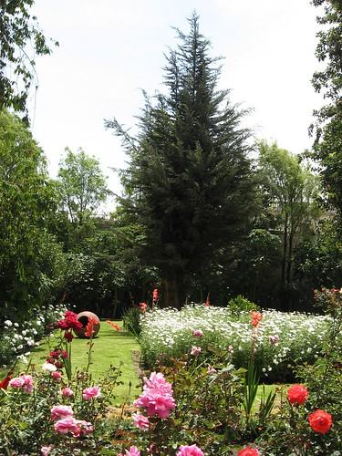 Garden in convent