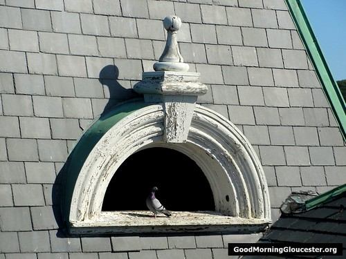 A Pane Of Glass Would Go A Long Way To Keeping The Pigeons Out