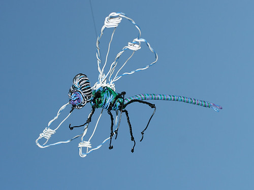 Dragonfly-aerial2