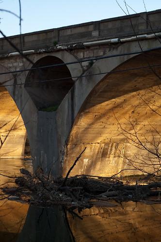 La luz en los ojos del puente