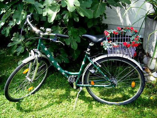 mein Fahrrad