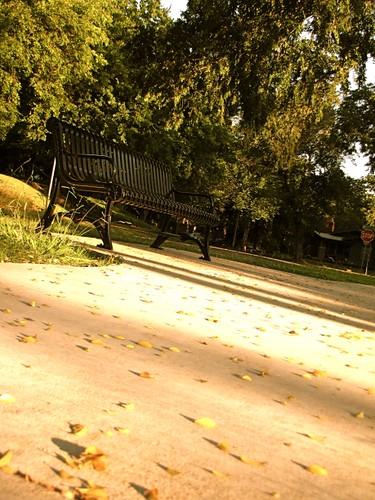 taken in goodholm park / copyright 2009