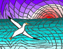 Search the Sea