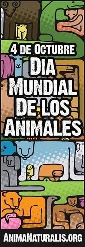 Día Mundial de los Animales.