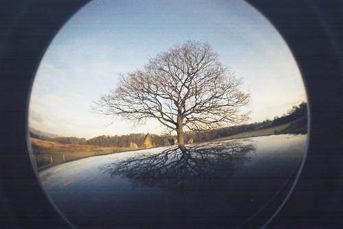 reflected circle