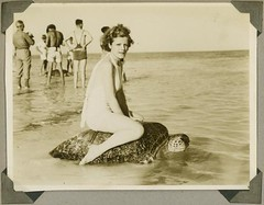 Young woman riding on the back of a turtle at ...