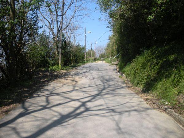 Foto 3 - Fin del asfalto