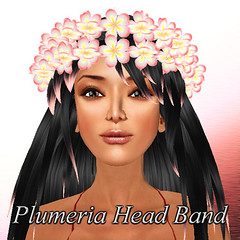 Plumeria Head Band
