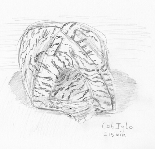 Cat Igloo drawing