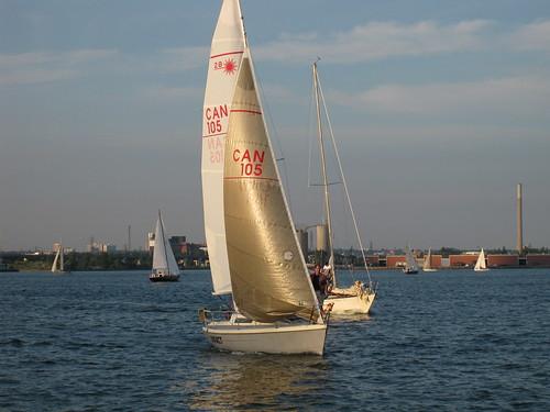 Sailboats on Ontario Lake