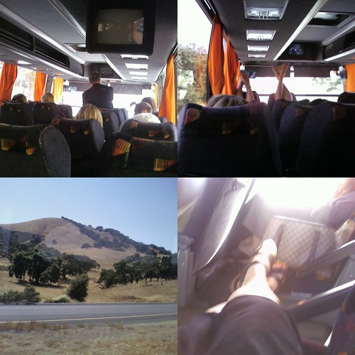 bus collage 1