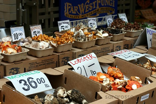 Mushrooms, mushrooms at San Francisco Ferry Building Marketplace