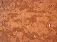 chão de brasília