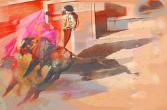 """""""Pink Escape"""": Liz Lopes"""