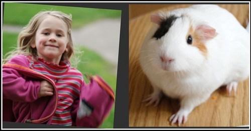 Girl & Guinea Pig