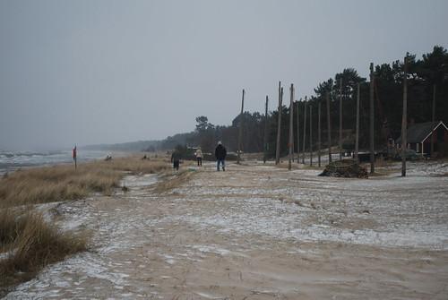 A windy walk by the sea