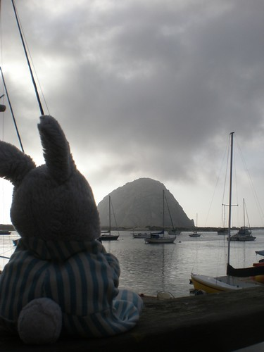 Bunny and Morro Rock